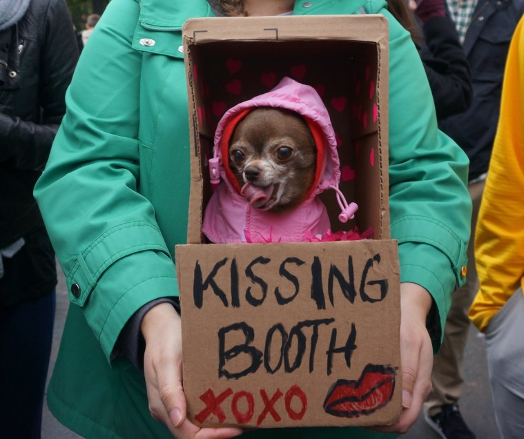 halloween-dog-parade-kissing-booth