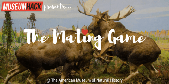 museum hack mating game