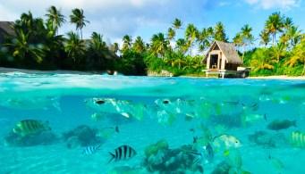 TAHITI ESPECIAL PAREJAS