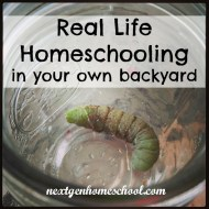 Real Life Homeschooling in Your Own Backyard