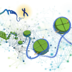 "First ""Genomics of Gene Regulation Data"" Available Publicly"