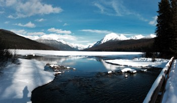 Bowman Lake Panorama