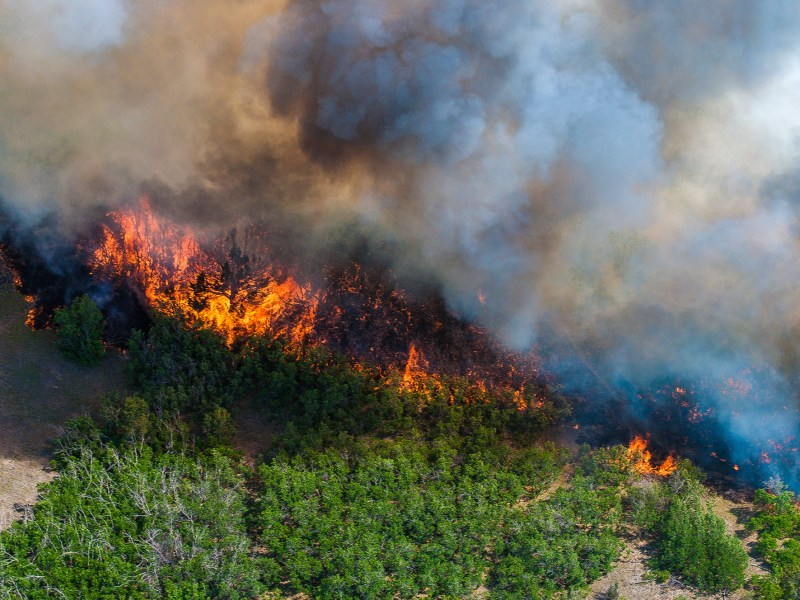 Why Do Farmers Care About Climate Change? Wildfire