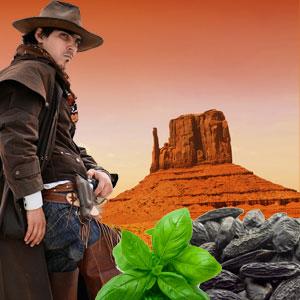 Wild Wild West Scent