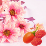 Pink-Daisies-and-Goji-Berries