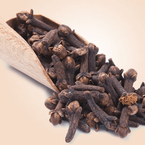 Clove Fragrance Oil