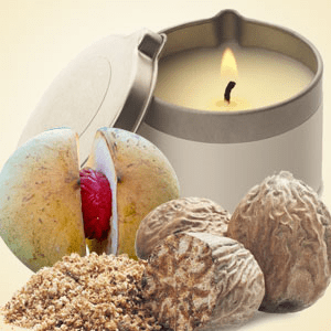 Nutmeg Fragrance Oil