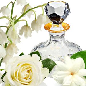 Pleasures Type Fragrance Oil