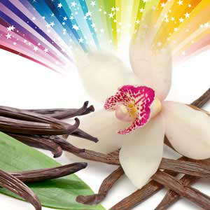 Vanilla Spectacular Fragrance Oil