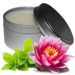Waterlily Fresh Mint Fragrance Oil Recipe