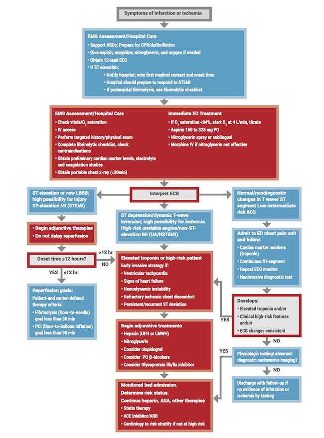 ACLS Algorithms you Need to Know