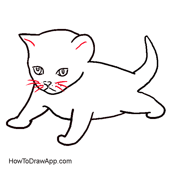 How to draw a small cat