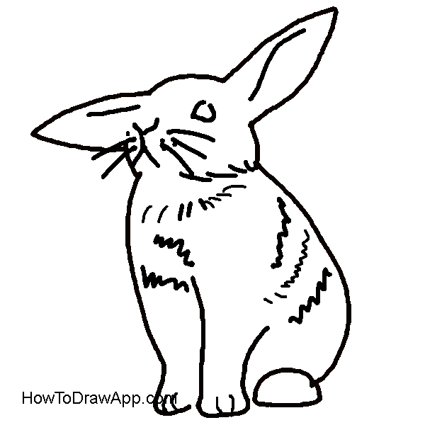 How to draw a rabbit step-by-step