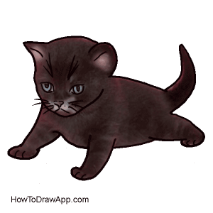 How to draw a kitten for kids