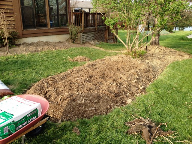 The dirt before I mixed in peat-moss, hummus, top soil and organic ferilizer