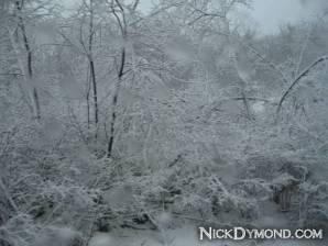 NickDymond.com-Winter-Is-Awesome (3)