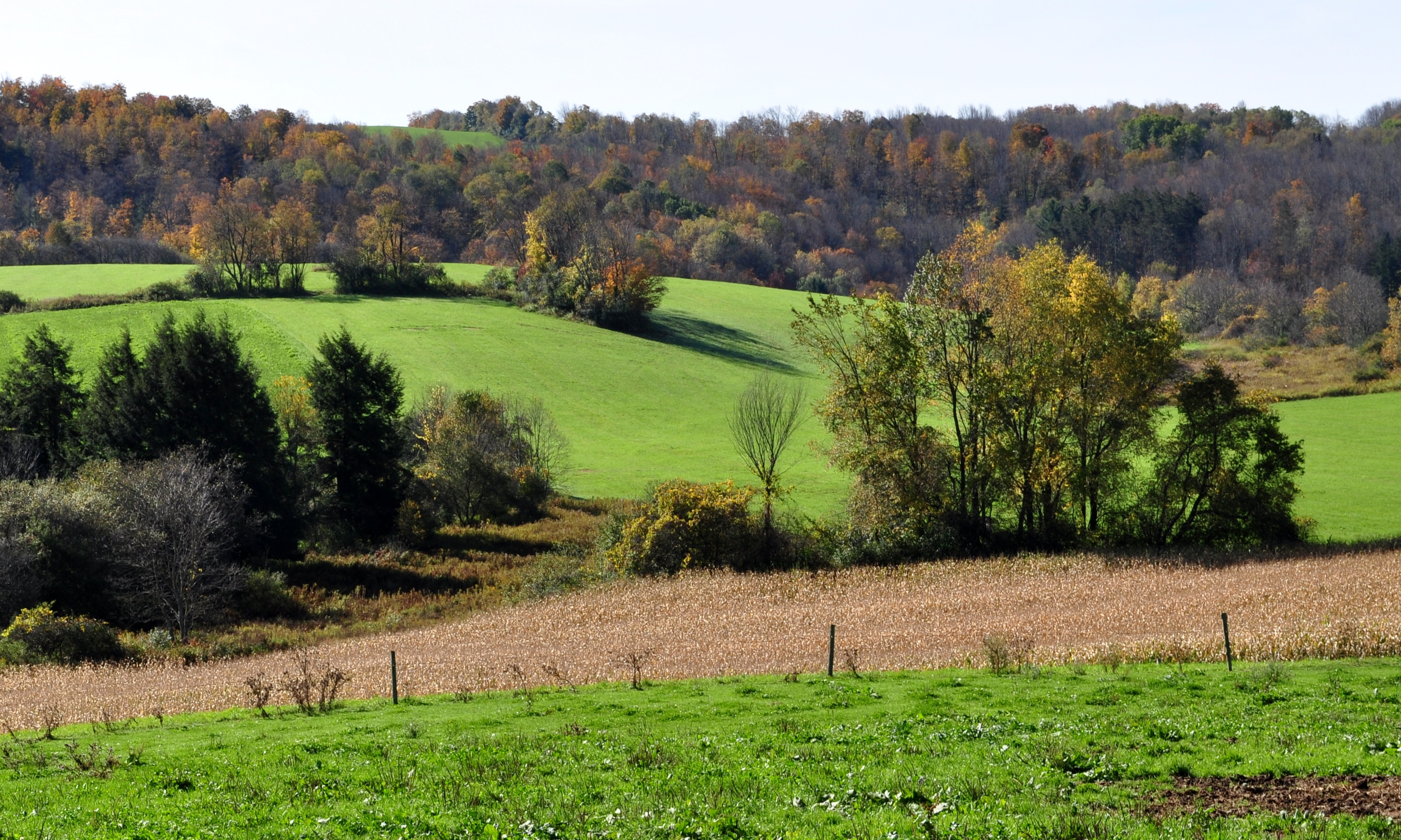 1080p Fall Wallpaper Rural Landscapes Nick S Nature Pics