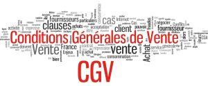 Travailleur Indépendant: Conditions Générales de Vente (CGV) et Intérêts pour retard de paiement légalement applicables