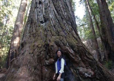 Alessandra in front of huge redwood tree