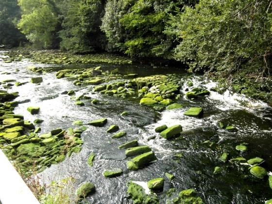 Almond River