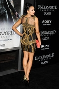 52a08 Katerina Graham   Underworld Awakening Premiere in L.A. (Jan 19, 2012) x6 Get more nipple slips at Nipple Slips org