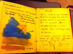 A page on silk