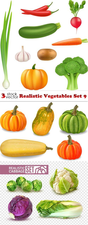 Vectors - Realistic Vegetables Set 9