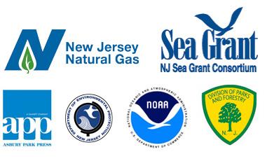 ocean-fun-days-logos
