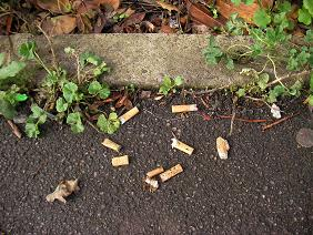 Fag ends left by Clarendon House occupants in Norbiton Hall