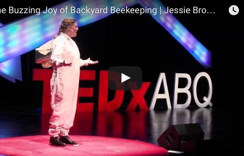 """TEDxABQ """"The Buzzing Joy of Backyard Beekeeping"""""""