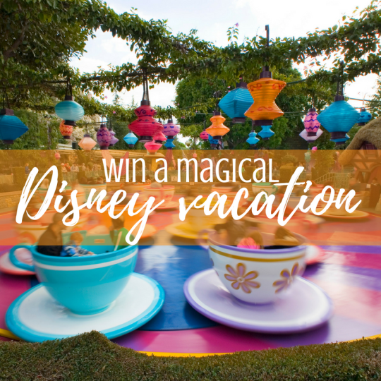 Win a Magical Disney Vacation Teacups Instagram