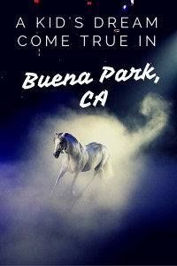 Buena Park, CA, a wonderfully family friendly city on the outskirts of Los Angeles, minutes from Disneyland. It is a dream destination for children with Knott's Berry Farm, Medieval Times and more