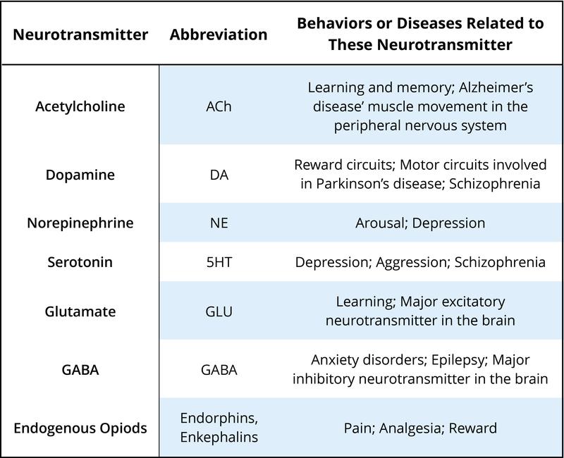 Psychopharmacology Noba
