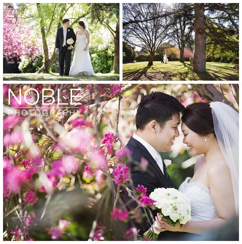 royce-hotel-asian-wedding-11.JPG