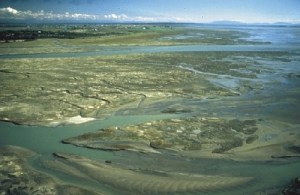 tidal-flats