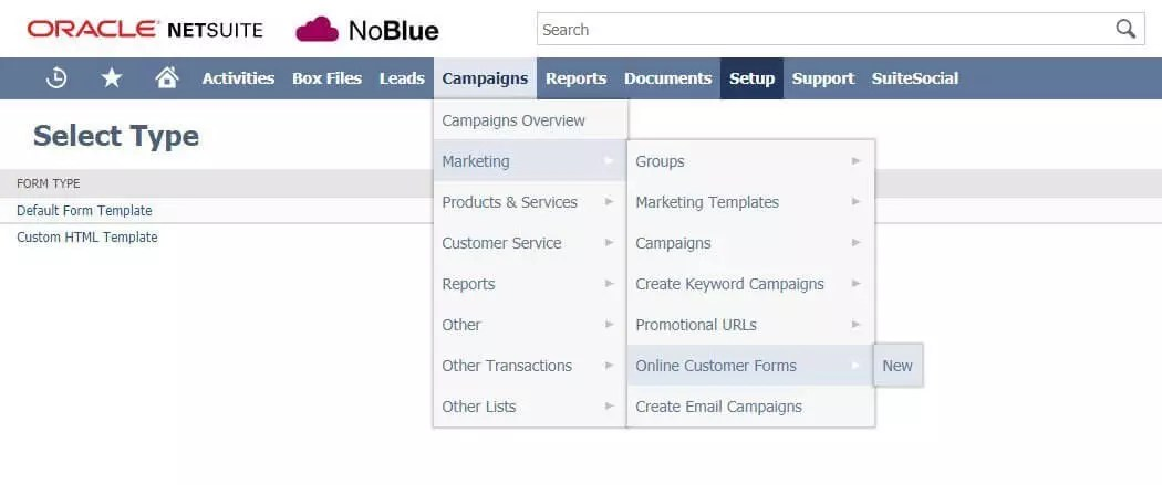 NetSuite Tips Integrating Contact Forms With NetSuite - NoBlue