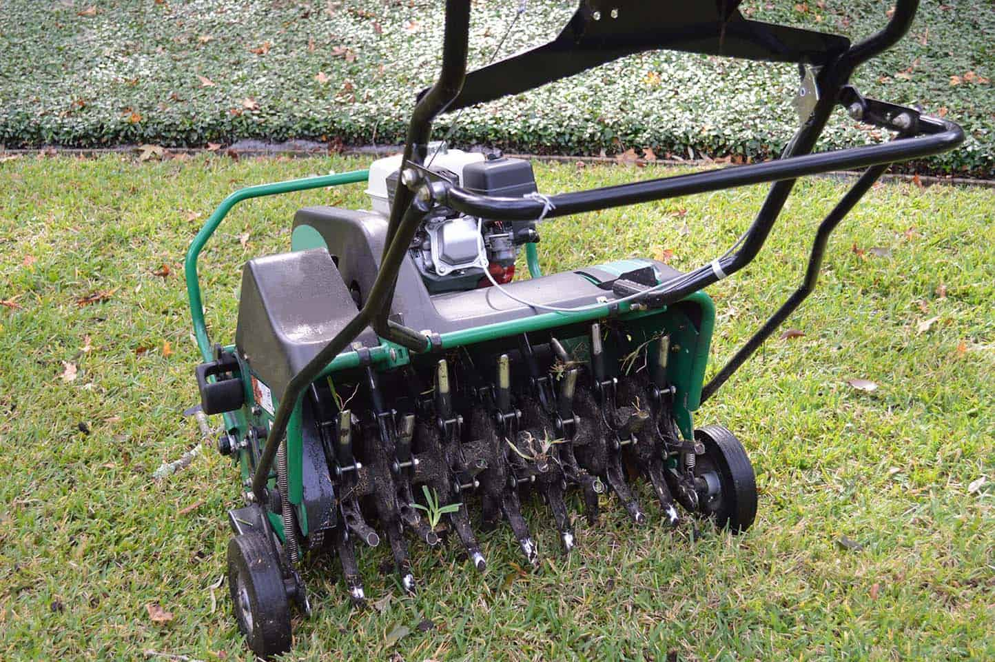 Grass Aerator Lawn Aeration The Lawn Barber Llc