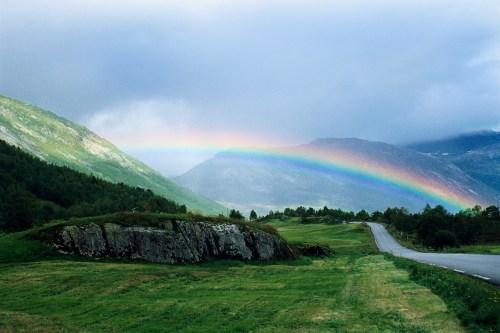 Medium Of Rainbow Bridge For Dogs