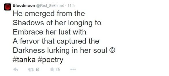 erotic twitter poetry
