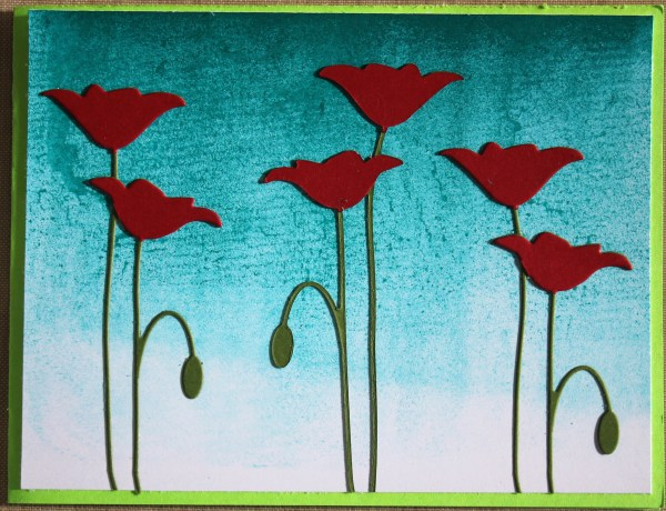 brayered poppies