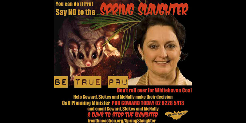 From winter clearing to spring slaughter: @RobinMosman reports on #leardblockade
