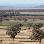 Liverpool Plains farmland. Photo: Kate Ausburn Creative Commons (CC BY 2.0)