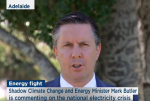 Mark Butler: calls for end of renewables  blame game and manage energy and climate policy in bipartisan way