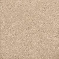 Wood Floor: Plush Carpet