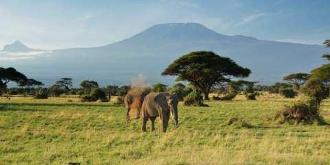 Kilimangiaro_Rita Manincor