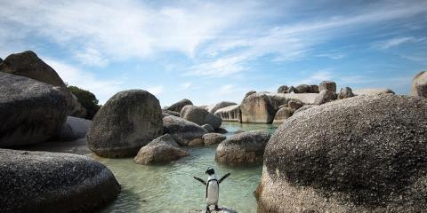 7MML Around the World 2014-2015 - Boulders Beach, Città del Capo, Sudafrica