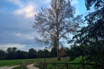 riserva_naturale_abbadia_di_Fiastra