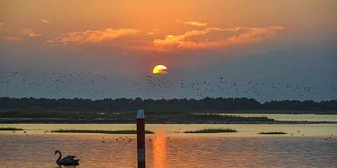 tramonto bibione