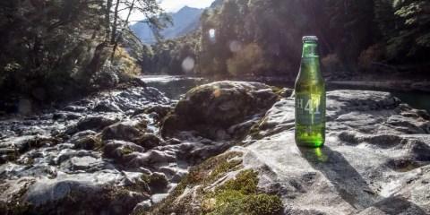 Heineken H41 amazzonia
