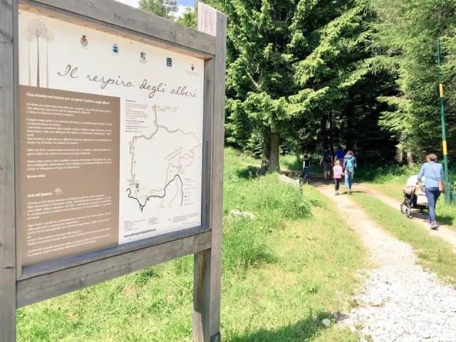 Itinerari naturalistici per famiglie sull'Alpe Cimbra